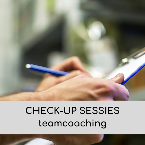 check-up sessies teamcoaching
