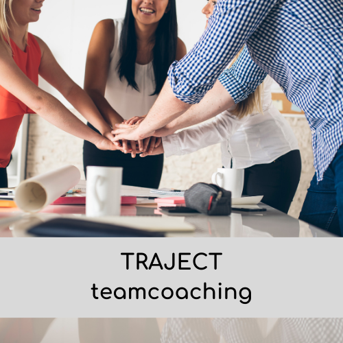 traject teamcoaching storytelling leiderschap
